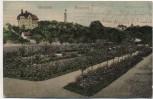 AK Chemnitz Rosarium Stadtpark Soldatenkarte 1908