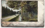 AK Naunhof Waldpartie nach Lindhardt mit Frauen Soldatenkarte 1910
