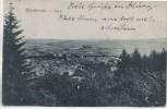 AK Bleicherode Total Ortsansicht Thüringen 1925