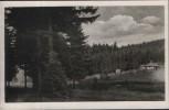 VERKAUFT !!!   AK Sommerfrische Langewiesen Waldkaffee Kranichsruh im Lohmetal 1960