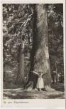 AK Foto Zwiesel Bei den Riesentannen mit Frau b. Zwieseler Waldhaus a. Falkenstein 1938