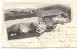 AK Gruss aus Wackersberg b. Bad Tölz 3 Bilder 1900 RAR