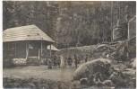 AK Waldtheater Oybin Waldkönigs Hochzeit Märchenspiel 1910
