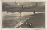 AK Foto Deep Küstenlandschaft mit Möwen Mrzeżyno b. Greifenberg Gryfice Briefstempel Schießstab Flakbrigade VIII. Pommern Polen Feldpost 1941