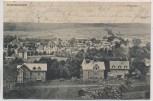 AK Hildburghausen Panorama Ortsansicht mit Villen 1905 RAR
