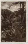 AK Grasleben Partie im alten Steinbruch b. Helmstedt 1930 RAR