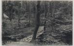 AK Grasleben Wald-Sanatorium Wald Idyll aus dem Park b. Helmstedt 1921 RAR