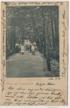 AK Gruss aus Augustusbad Ringpromenade mit Kindern b. Liegau Radeberg 1902