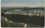 AK Hahnenklee im Harz Ortsansicht b. Goslar 1910