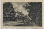 AK Trier Nordallee mit Menschen 1913