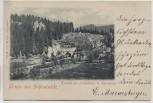 AK Gruss aus Schönheide Tunnel zwischen Schönheide und Eibenstock mit Zug und Bahnhof 1900 RAR