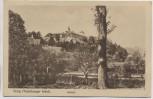 AK Iburg Teutoburger Wald Schloß 1925