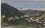 VERKAUFT !!!   AK Wleń Lähn an der Bober Villen am Bahnhof und Lehnhausburg Schlesien Polen 1921 RAR