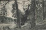 AK Am Ihland-See bei Strausberg 1910