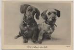 AK Foto Hund Dachshund Teckel Dackel und Rauhaardackel Wir haben uns lieb E.Bohl 1937