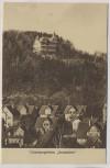 AK Wernigerode Genesungsheim Sennhütte mit Häuser 1920