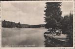 AK Luftkurort Tannenbergsthal Thierteich b. Muldenhammer Vogtland 1939