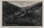 AK Foto Eppstein im Taunus Blick ins Fischbachtal 1943