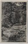 AK Foto Geschwenda Thüringer Wald Umgebung An der Gera 1955