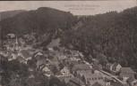 AK Berneck im Fichtelgebirge Blick von der Kirchleite 1910