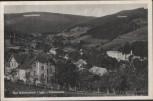 AK Bad Schwarzbach im Isergebirge Totalansicht Świeradów-Zdrój Niederschlesien 1933