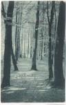 AK Weg zum Alten Schloß vom Bahnhof Vormwald aus b. Hilchenbach 1909 RAR