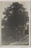 AK Foto Krombach 2000-jährige Eibe Mann vor Haus Krompach b. Liberec Reichenberg Sudeten Tschechien 1943