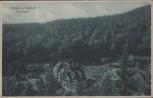 AK Sülzhayn Südharz Hohenstein b. Ellrich 1925
