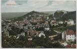 AK Blankenburg im Harz Ortsansicht 1910