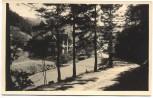 AK Kurort Fehrenbach Thür. Wald Ortsansicht b. Masserberg 1940