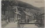 AK Wildemann im Harz Ortsansicht mit Grumbach Kinder auf Brücke 1923