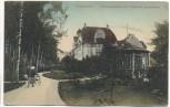 AK Friedenau Birkenwäldchen mit Maybach-Gymnasium Berlin 1911 RAR