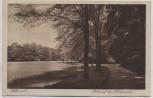 AK Halle an der Saale Partie auf den Pulverweiden 1926
