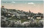 AK Leisnig Sachsen Baumblüte Bahnpoststempel 1925