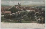 AK Quedlinburg Schloss mit dem Münzenberg Ortsansicht mit Kinder 1907