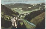 AK Blumenau-Mellenbach Oberes Schwarzatal b. Mellenbach-Glasbach Bahnpost 1925
