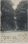 AK Lübeck Cronsforder Allee 1910 RAR