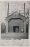 AK Thale am Harz Walpurgishalle 1904
