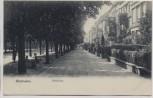 VERKAUFT !!!   AK Wiesbaden Adolfsallee 1904