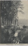 AK Dresden Weisser Hirsch Weg nach Ullersdorf 1910