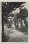 AK Auf der Landstraße vor Wolfshain b. Beucha Brandis 1920 RAR