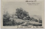 Künstler-AK Loschwitz Eduard Leonhardi Ludwig Richter-Feier b. Dresden 1903 RAR