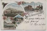 Litho Gruss aus Salzhemmendorf Bahnhof Apotheke Kirche 1898 RAR