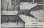 AK Wintersport auf dem Mönchswalder Berg b. Wilthen Feldpost 1917 RAR