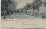 AK Gruß aus Binz Putbuser-Strasse Rügen 1905 RAR