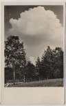 AK Foto Velbert Rhld Sommer im Herminghauspark 1940
