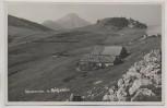 AK Foto Klausneralm Elland-Alm mit Spitzstein b. Aschau im Chiemgau 1936 RAR