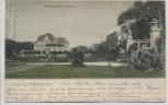 AK Gruss aus Stuttgart Botanischer Garten 1905