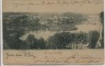 AK Flecken Zechlin Ortsansicht b. Rheinsberg 1899