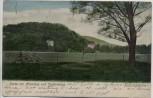 AK Bad Kissingen Partie mit Altenberg und Staffelsberg 1904